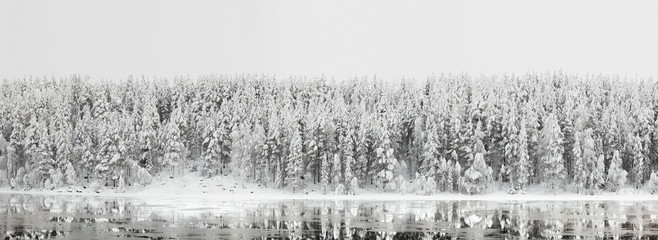Winter landscape. Forest panorama with reflection in the river