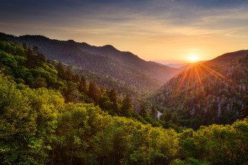 Canvas Prints Hill Newfound Gap in the Smoky Mountains
