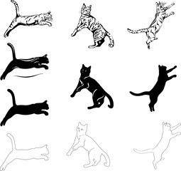cat jump, different graphic options image