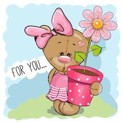 Cartoon Teddy Bear Girl