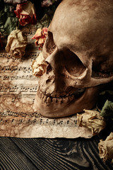 Vintage background with skull, dry roses and music sheet