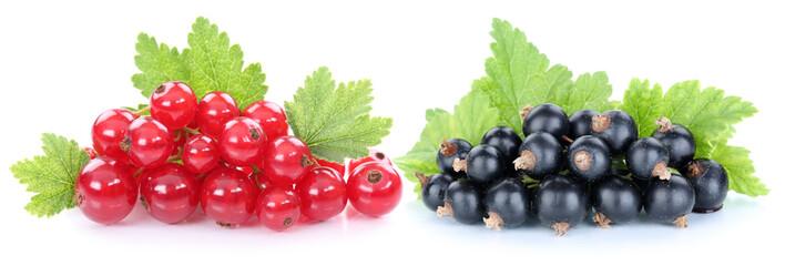 Rote schwarze Johannisbeeren Johannisbeere Früchte Beeren Obst