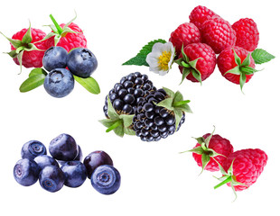 Collage of bilberries, blueberries, raspberries and blackberries