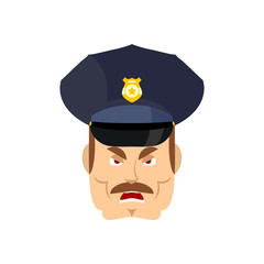 Angry policeman. wrathful Cop. Aggressive officer police