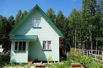зеленый дом в лесу с забором и крыльцом