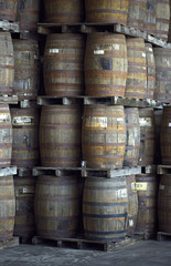 wooden barrels stacked in the distillery