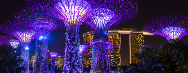 Keuken foto achterwand Singapore Night view of illuminated Supertree Grove at Gardens by the Bay in Singapore
