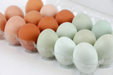chicken eggs with different color in the container