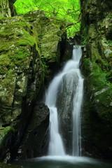 夏の網代滝