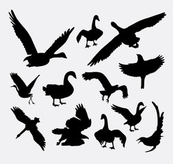 Duck, goose, swan, eagle bird silhouette. good use for symbol, logo, web icon, mascot, avatar, sticker, sign, or any design you want.