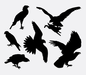 Eagle, hawk, falcon, pose bird silhouette. Good use for symbol, logo, web icon, mascot, sticker design, sign, avatar, or any design you want. Easy to use.