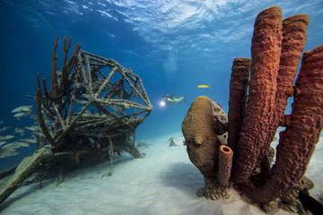 Unterwasser - Riff - Wrack - Schwamm - Taucher - Tauchen - Curacao - Karibik