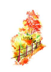 Watercolor landscape, scenery - fall, tree, bush, fence, grass. Illustration. Red, orange tree