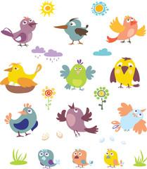 Birds, a set of images, illustration, pattern, decor, spring, summer