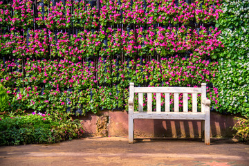 White bench with the bush and pink flower Background