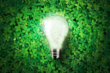 Glowing light bulb is on green grass background , concept idea