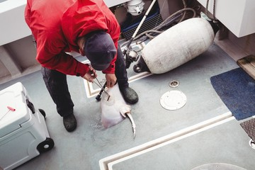 Fisherman removing hook from a ray fish