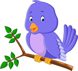Cute purple bird cartoons
