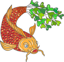 Koi Nishikigoi Carp Fish Microgreen Tail Drawing