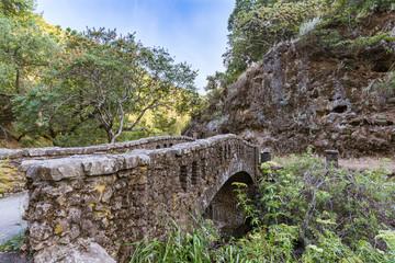 Old Bridge at Alum Rock Park / in San Jose, California