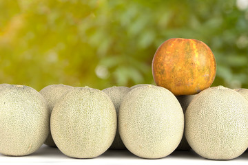 Variety asian Cantaloupe and melons with background