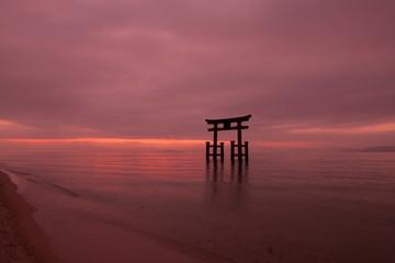 朝の白鬚神社の鳥居