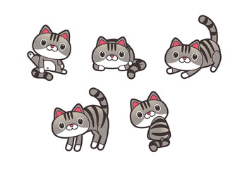 Vector Set of Cutie Tabby cat in various actions Isolated on White Background.