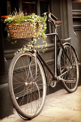 Vintage bike and flower basket