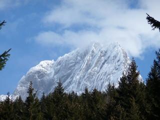Dachstein Glacier, Filzmoos, Austria framed by fir trees, and shrouded by cloud around the peak