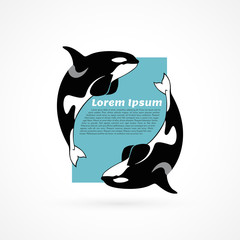 orca whale template sample poster frame on white background