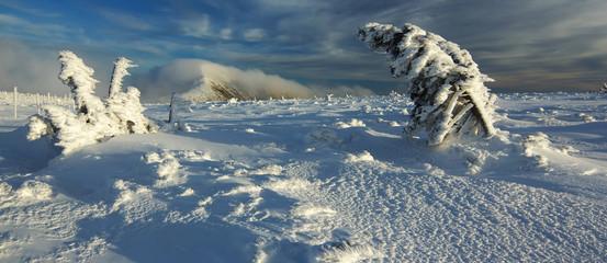 Winter Landscape, Giant Mountains, Czech Republic