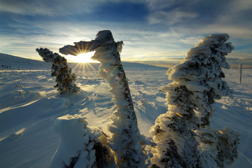 Winter Sunset on Giant Mountains, Czech Republic
