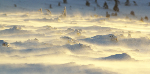 Snowdrifts with Churning Snow Enlightened by the Sun