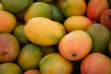 mangoes background - mango fruit