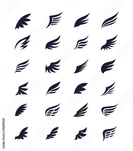 wings vector set of wing design elements vector illustration