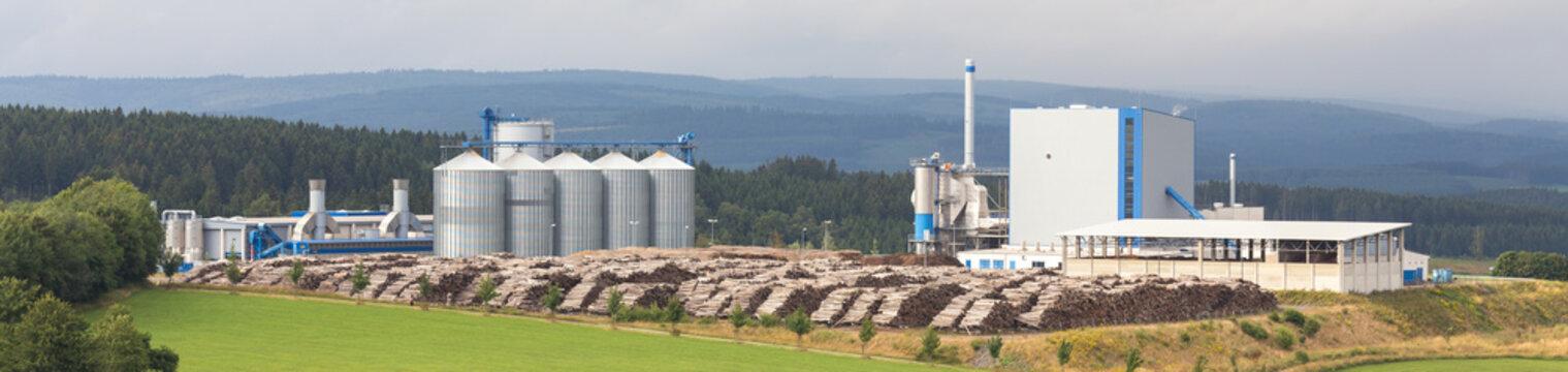 biomass cogeneration plant