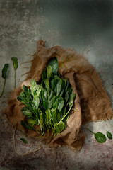 Spinach leaves on cloth