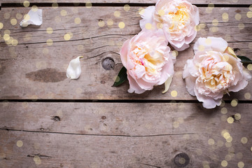 Festive background with  pink peonies flowers on aged wooden tab