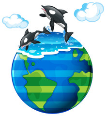 Two killer whales swimming in the sea