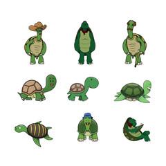 turtle illustration design collection