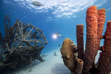 Unterwasser - Riff - Schwamm - Wrack -Flugzeugwrack - Taucher - Tauchen - Curacao - Karibik