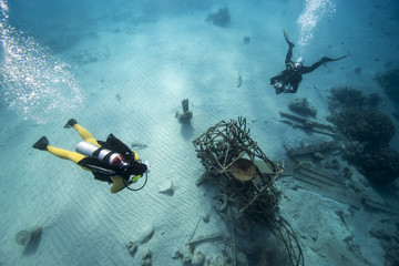 Unterwasser - Riff - Taucher - Wrack -Flugzeugwrack - Tauchen - Curacao - Karibik
