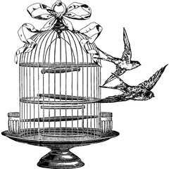 Vintage image swallow, birdcage