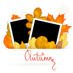 Photo frames with colorful autumn leaves