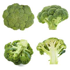 collection of broccoli isolated