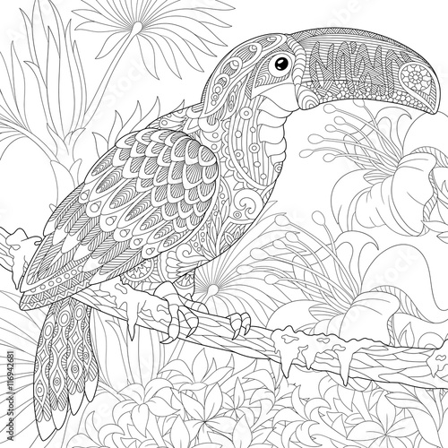Stylized Toucan Bird Sitting On Palm Tree Branch Among Hibiscus Flowers Freehand Sketch For Adult