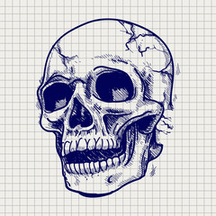 Hand drawn skull sketch vector on notebook page