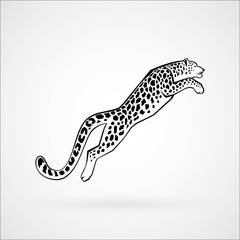 Snow Leopard line vector illustration logo, sign, emblem isolated