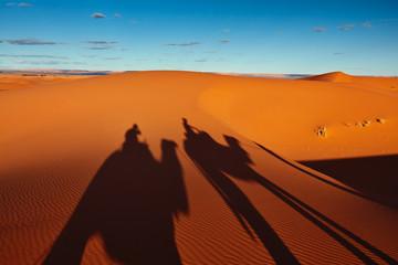 Foto auf AluDibond Wuste Sandig Sand dunes in the Sahara Desert, Merzouga, Morocco