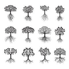 Set Black Tree and Leafs. Vector Illustration.